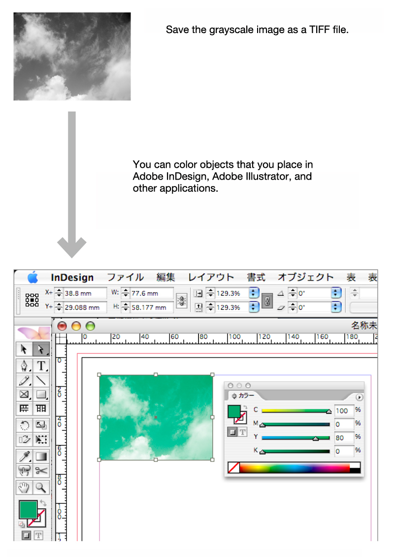 TIFF is often used when coloring a grayscale image in a DTP software environment.