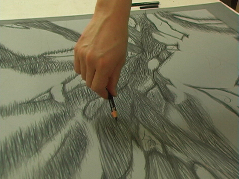 Drawing with a Dermatograph pencil