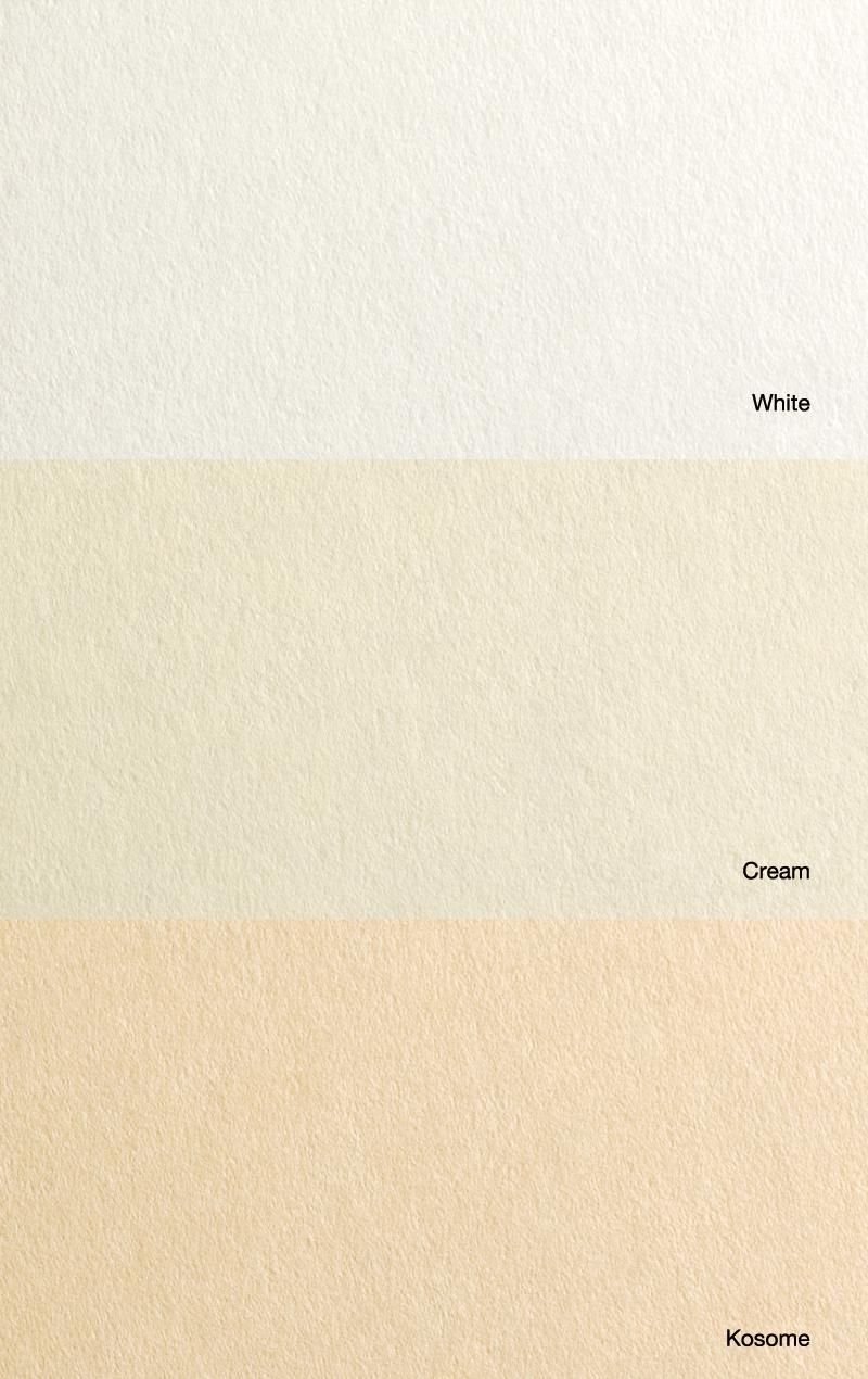 Shin-Torinoko paper (close-up)