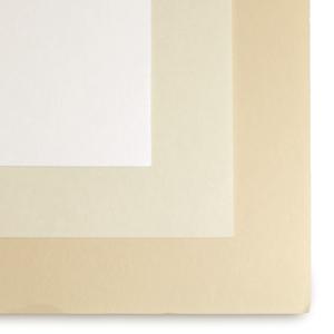 Shin-Torinoko Paper
