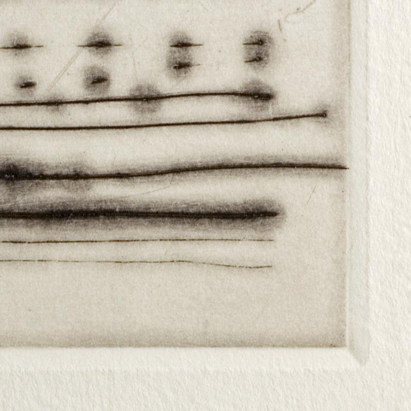 Plate Mark